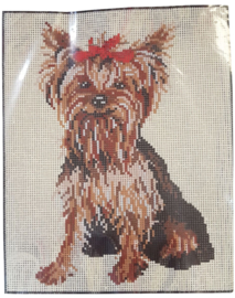 Yorkshire Terrier Pre Printed Canvas Vervaco