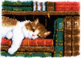 Slapende Kat in Boekenrek Vervaco Knooppakket