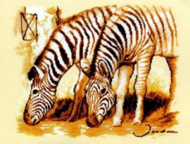 Dawn Zebra's Eavenwave Borduurpakket Vervaco