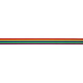 20mm Regenboog Elastiek