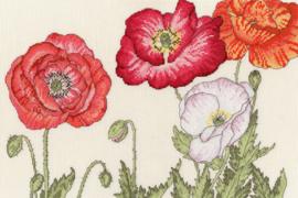 Poppy Blooms Aida Bothy Threads Telpakket