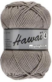 038 Hawaii 4 Lammy