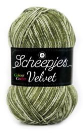 Velvet 855 Chaplin