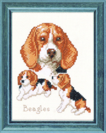 Beagle honden Aida Telpakket Pako