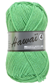 211 Hawaï 4 Lammy