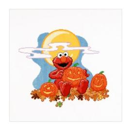 Sesamstraat Halloween Aida Thea Gouverneur telpakket
