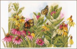 Zonnehoedjes en Vlinders Evenwave Telpakket Lanarte