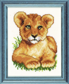 Jong leeuwtje Aida telpakket - Pako