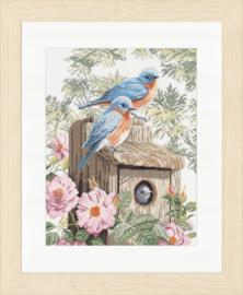 Blauwe Vogels Aida Borduurpakket Lanarte