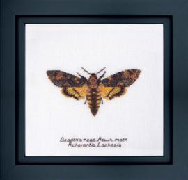 Death's head Hawk Moth Borduurpakket Aida Thea Gouverneur