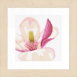 Magnolia bloem Aida Telpakket Lanarte