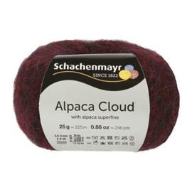 032 Alpaca Cloud SMC