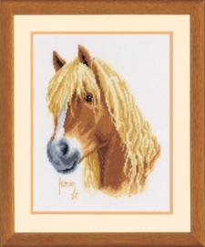 Franciens pony Aida telpakket Vervaco