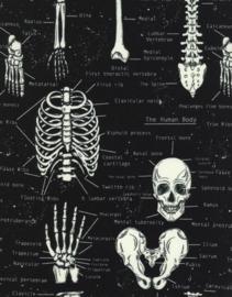 Black Fun Skeleton (Glow in the dark) - Timeless Treasures