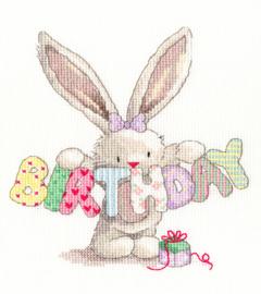 Birthday Aida Bebunni Bothy Threads Telpakket