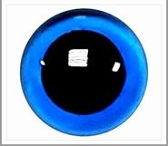 15mm Blauwe Transparante Veiligheidsoogjes, 1 paar