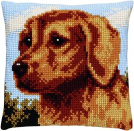 Hond (Golden retriever) Kruissteekkussen Pako