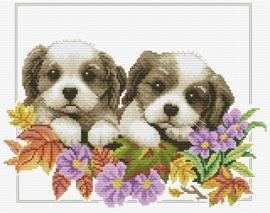 Peeking Pups - Spiekende Puppy's Aida Voorbedrukt Borduurpakket Needleart World