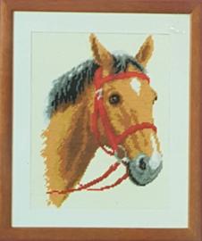 Horse Pre Printed Canvas Vervaco