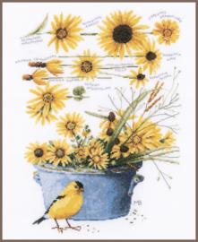 Zonnebloemen Eavenwave Borduurpakket Lanarte