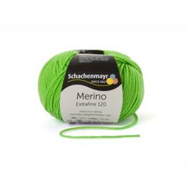 170 Merino Extrafine 120 SMC