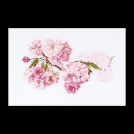 Blossom Evenwave Telpakket Thea Gouverneur