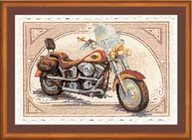 Harley Davidson Aida Riolis Telpakket