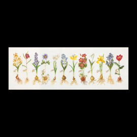 Voorjaars bloemen Evenwave Telpakket Thea Gouverneur