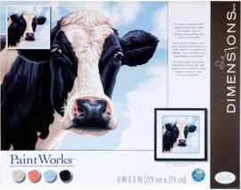Cow PBN - Dimensions