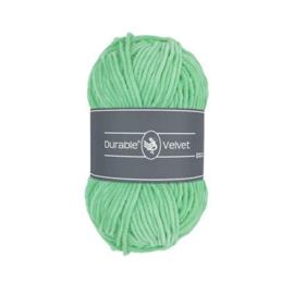 2137 Mint Velvet - Durable