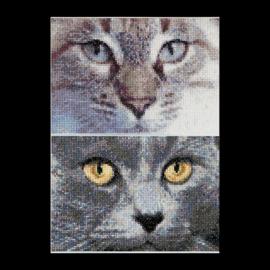 Jack & Luna Cats Aida telpakket Thea Gouverneur