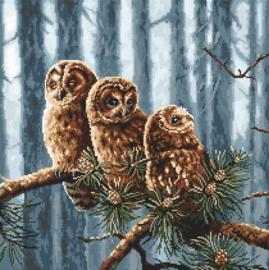 Owls Family Aida Leti Stitch Telpakket