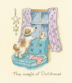 The Magic of Christmas Aida Bothy Threads Telpakket