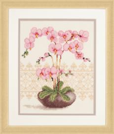 Orchidee Aida Vervaco Telpakket