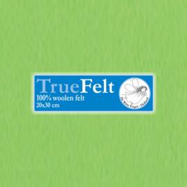 Appel 20 x 30cm TrueFelt