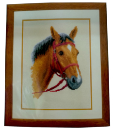 Paard Aida Vervaco Telpakket