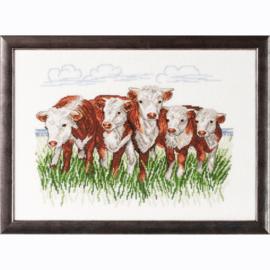Hereford Cows Eavenwave Borduurpakket Permin