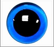 6mm Blauwe Transparante Veiligheidsoogjes  , 1 paar