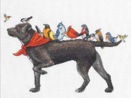 Bird Dog Aida Telpakket - Dimensions