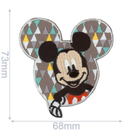 Hello Mickey Applicatie