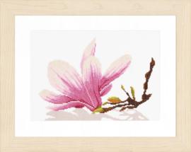 Magnolia tak Aida Telpakket Lanarte