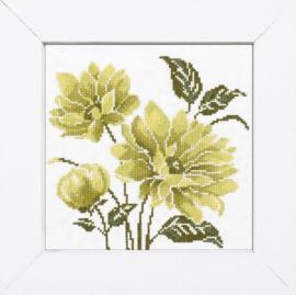 Lime Green Flower Telpakket Aida Lanarte