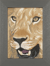 Lanarte Animals Lion in Close up