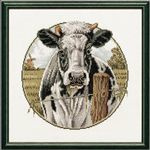 Pako  koe in de wei 31x31x cm 238.555