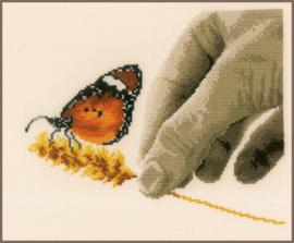 Hand en Vlinder Aida telpakket Vervaco