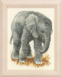 Olifant Aida Telpakket - Pako