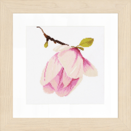 Magnolia knop Aida Telpakket Lanarte