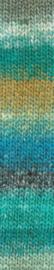 S470 Omura Silk Garden Sock - Noro