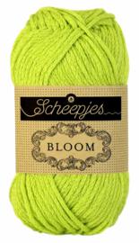 Bloom 413 Gerbera Scheepjes