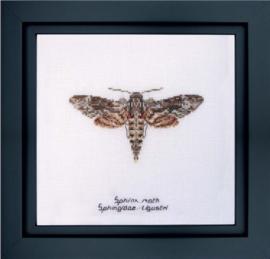 Sphinx Moth Borduurpakket Aida  Thea Gouverneur